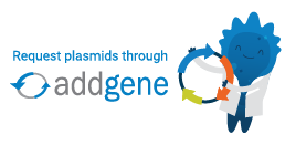 Link to George Eisenhoffer Lab Plasmids