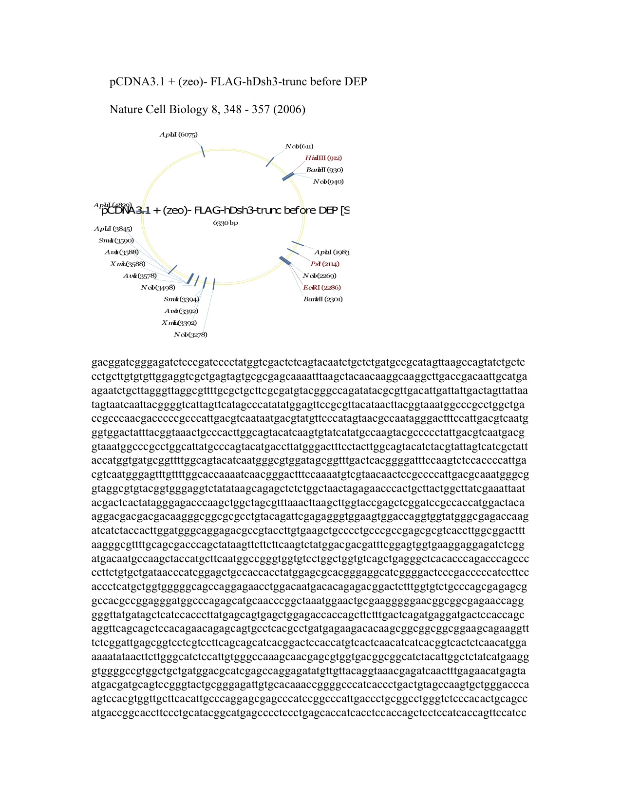 pcdna3 1 myc his pdf