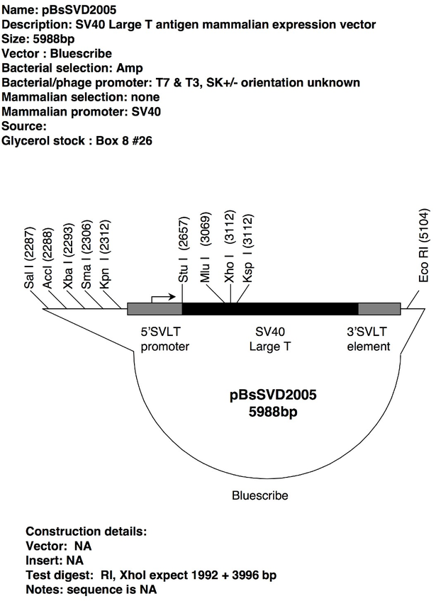 download The Crisis of German Historicism : The Early Political