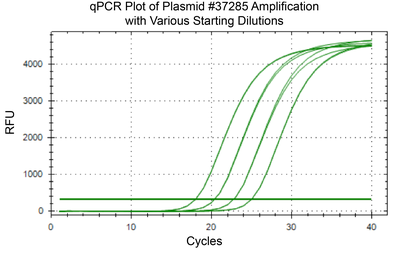 qPCR of AAV Vector