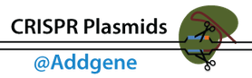 CRISPR-Cas-Plasmids-at-Addgene.png