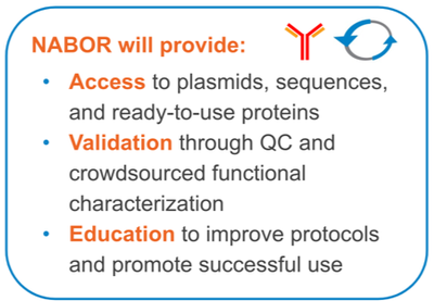 The Neuroscience AntiBody Open Resource (NABOR) will provide access to, validation of, and educational resources for recombinant antibody tools.