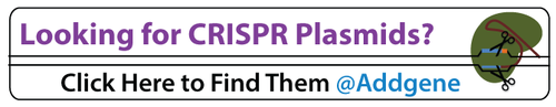 Looking-for-CRISPR-plasmids-click-here-to-find-them-at-addgene.png