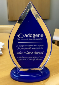 photo of blue flame desk award