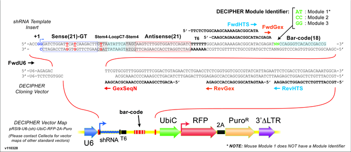 decipher-library-diagram.jpeg