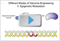 Genome Engineering General Principles Video