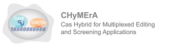CHyMErA-Logo.jpg