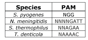 CRISPR-Cas9-PAM-sequences.png