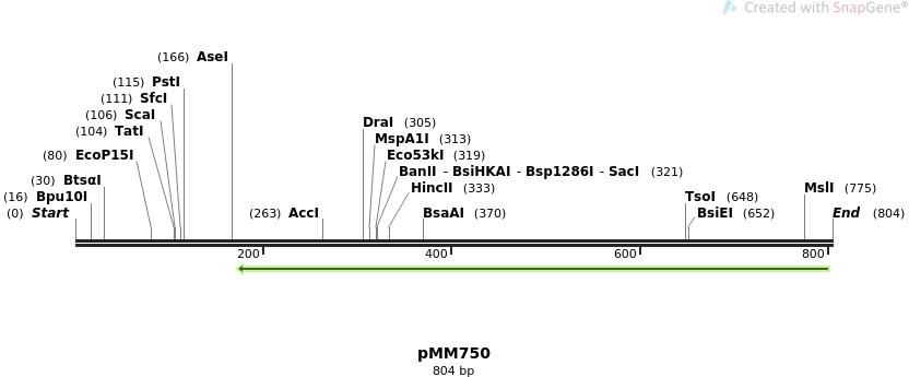126270_map