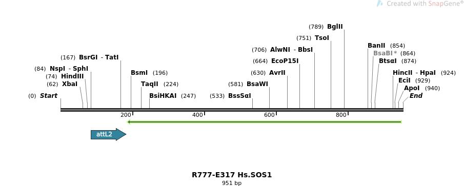 132048_map