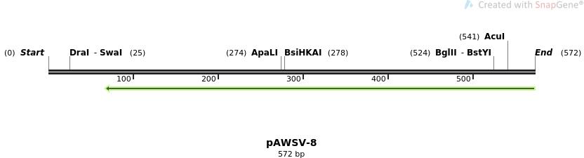 136779_map