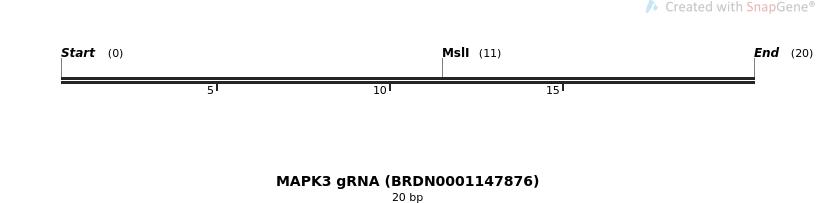 143427_map