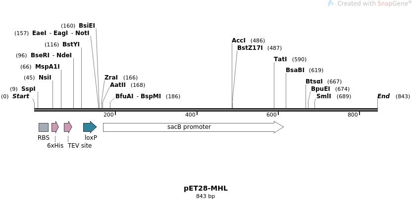 32140_map